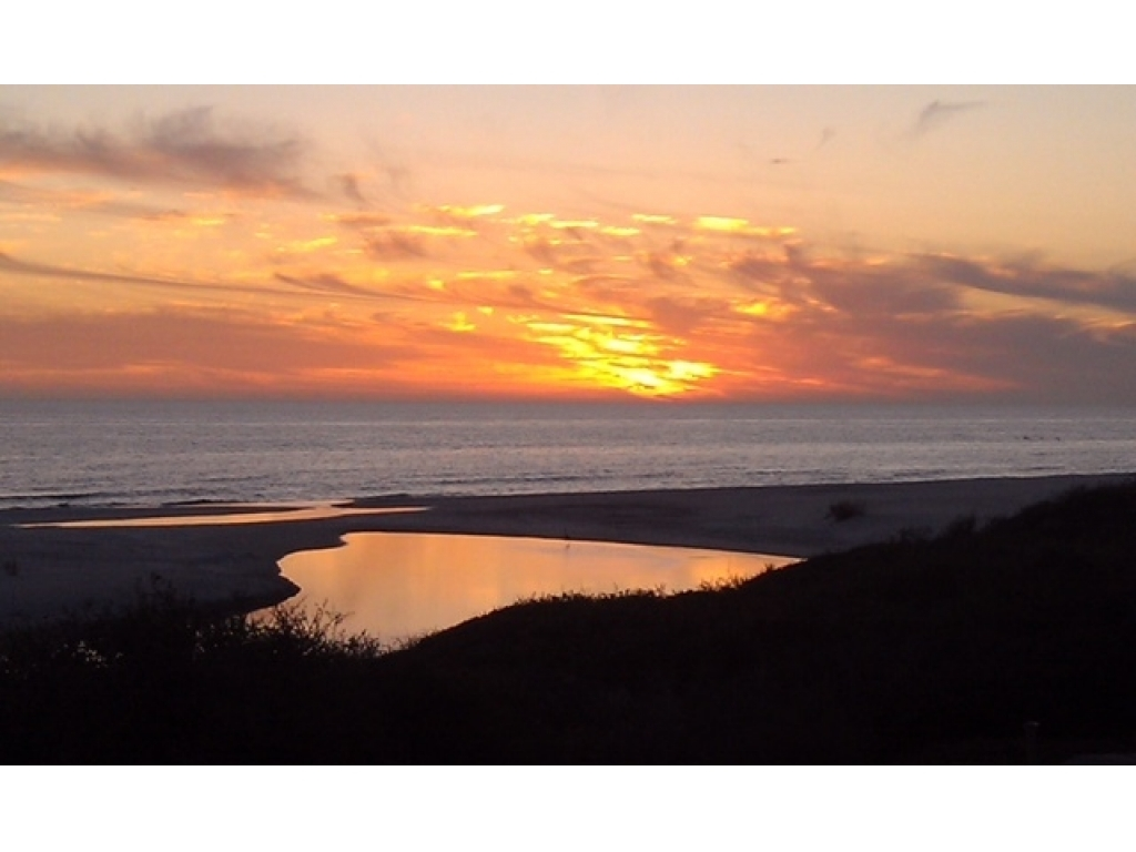 307 Turtle CovePanama City Beach, Florida 32413